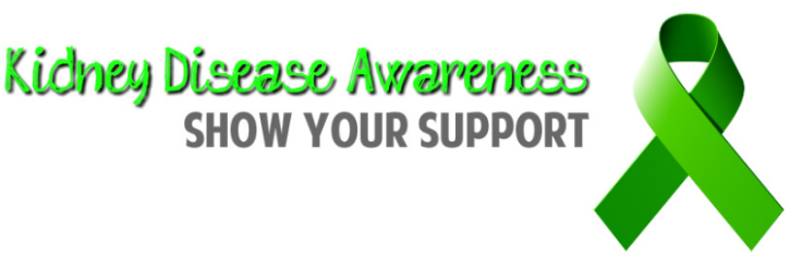 Kidney Disease Solution Program Review